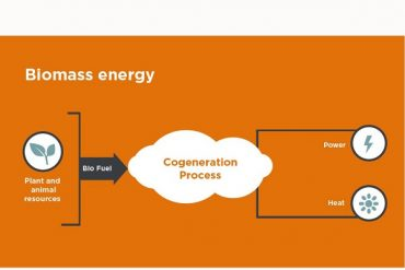 Biomass power generation and the application of biomass energy