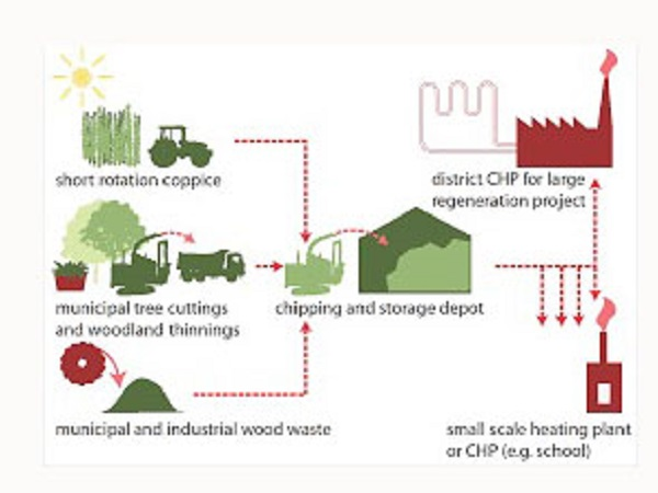 Several different ways of existence of biomass fuel